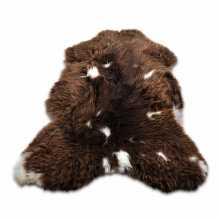 Brown with white accents Texel's furry sheepskin